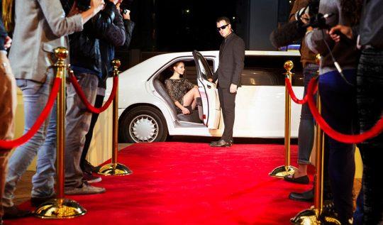 red carpet 540x317 - Oscar 2018: confira os looks que se destacaram no red carpet