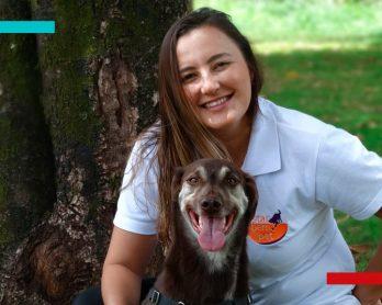 BLOG Capa post 348x278 - #LiveMondaine | O seu Pet e o fim da quarentena com Caroline Felipe